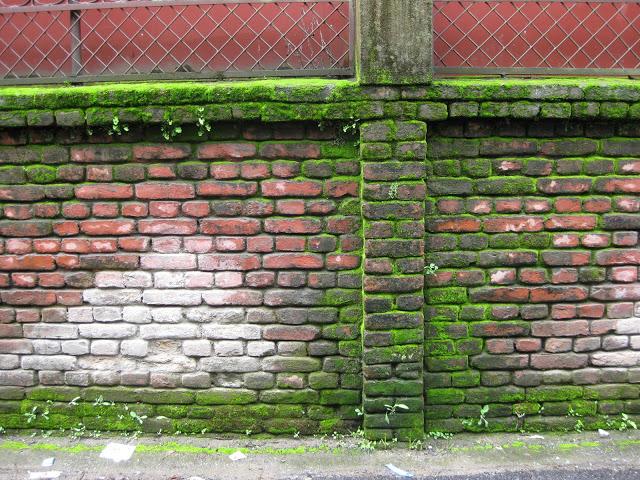 wall 9