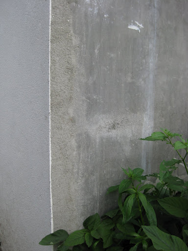 wall 21