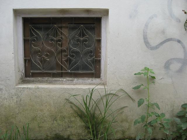 wall 24