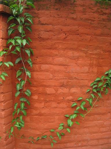 wall 33