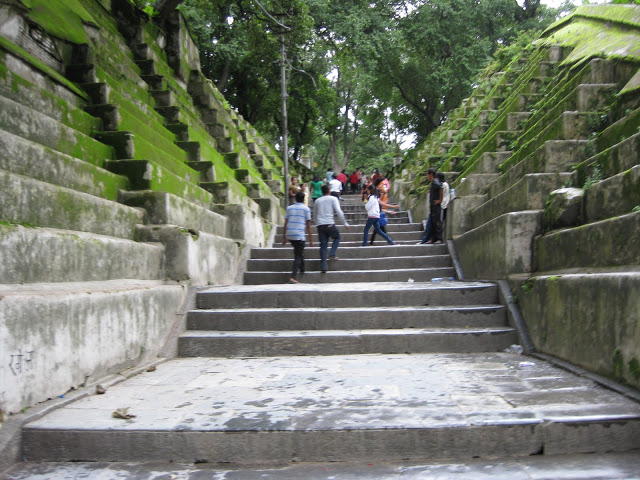 Moss stairs