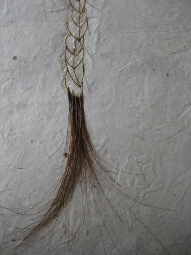 braid tail