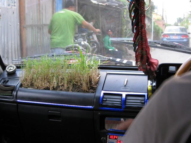 Taxi garden