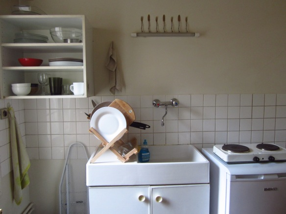 The tiny European-sized kitchen...