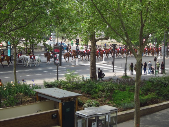 And then, of course, there were the horses...